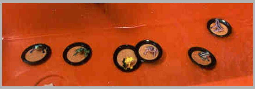 Lily Pad Sensory Table Activity