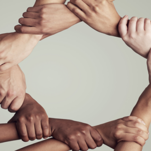 social justice principles