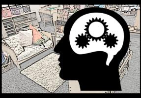 Teaching to Brain